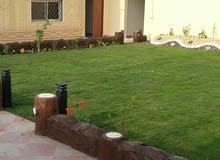 تنسيق حدائق وتنظيف وصبغ الباسكو