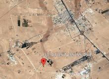 دونم طريق المطار  بسعر 12 الف بجانب مزارع تصلح لاقامه مزارعه