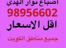 اصباغ نور الهدي ابو حسين