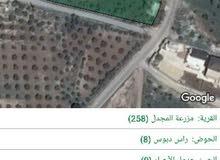 ارض مساحة 4.6 دونم للبيع في المجدل