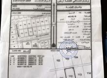 ارض حي عاصم مخطط اللبان