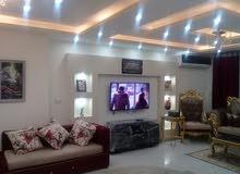 للايجار شقة مفروشه مودرن في شارع شهاب بالف جنيه لليوم