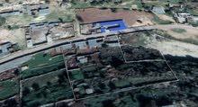 قطعة ارض خلف مصنع السماد