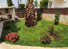 لاندسكيب landscape تقليم شجر زراعة نخيل ورد ايطالي نيجيل تصميم 3D حدائق و شاليه