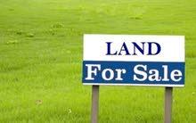 أرض للبيع في البنيات قرب جامعة البتراء