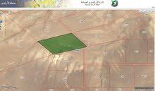 ارض للبيع قرب جامعة الحسين-معان