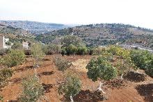 ارض للبيع في منطقة بدر , مساحة الارض 4000م