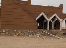 مقاول تراث شعبي من الطين والخشب والجريد