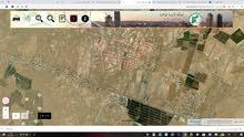 10 دنمات رحبة ركاد بالقر من شارع بغداد الدولي