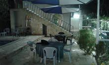 شاليه ومزرعة للايجار قريب البحر الميت