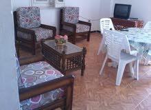 apartment area 280 sqm for rent