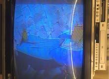 للبيع تلفزيون ميتسوبيشي  قديم ملون ( خشب )