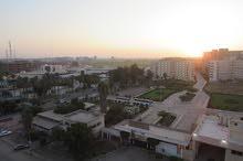 فرصة ذهبية امام المدينة الجامعية و الموقف الجديد بطنطا