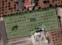 ارض للبيع تبعد عن اوتستراد مادبا 500 متر علي طريق المطار للبيع