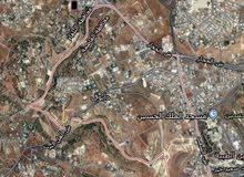ارض للبيع في دابوق مساحة 2 دونم و 600 متر على الشارع الذي يربط بين دابوق و الكرسي و البيادر