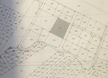 ارض مساحة 3 دونم و 40 متر في عين الباشا للبيع