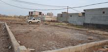 ارض طابو زراعي في منطقة الصالحيه قضاء شط العرب