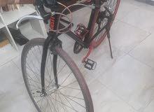 دراجة مقاس 28 ايطالية كورسا وزنها 8 ك  بيع او استبدال بي دراجة جبلية
