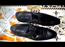 حذاء رسمي 2018 ecoo