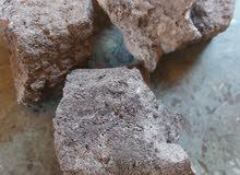 توريد فحم حجري