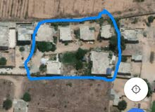 قطعة ارض نص هكتار يوجد بها سبعة منازل امام شيل القرقني