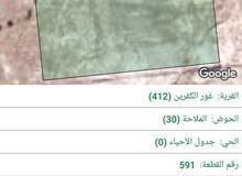 ارض للبيع في غور الكفرين المغطس بسعر مميز و اطلالة خلابة على فلسطين