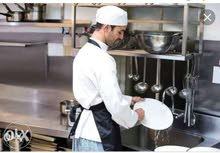 مطلوب فورا عمال (استيورد) لفنادق خمس نجوم ف شرم الشيخ