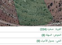 ارض زراعية بمنطقة صخرة -عجلون