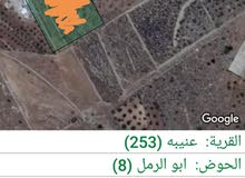 4 دونم-جرش-عنيبة-قرب مزارع بركات