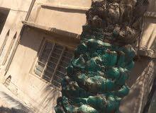 حي الاندلس - خلف رابطة المجلس البلدي
