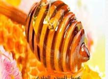 محيط العسل ((سدر ، وسمر ،طلح ))