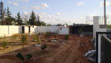 قطعة ارض للبيع 1000م تنقسم مسورة وبها مظلة وتريلة وبئر ومشجرة 190ألف