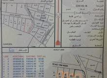 للبيع أربع أراضي زراعية الموقع (أبو رغوة)شمال ولاية السويق