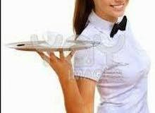 مطلوب موظفة أو موظف للعمل فورا في مطعم منطقة الدوار السابع