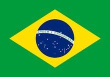 نوفر  خدمات الفيزا البرازيلي  السياحيه