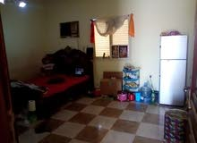 studio for rent for family or executive bachelors in wakra