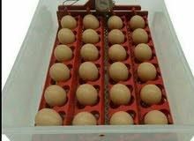 للبيع فقاسه بيض دجاج وفري من شركة الجسور