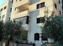 Shafa Badran apartment for rent with 3 rooms