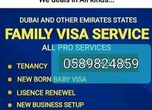 TENENCY/EJARI/FAMILY VISA/License RENEWAL