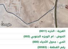أراض جنوب عمان الذرة