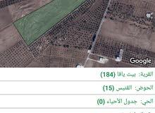 ارض للبيع في بيت يافا دونم و350متر سعر المتر8دنانير حي القنيص