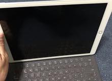 iPad Pro 12.9 wifi only