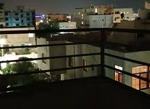 الحي الشرقي -شمال حديقة طارق