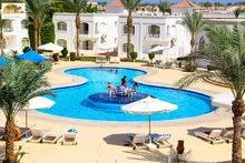 رحلات شرم الشيخ مع سونستا للسياحة