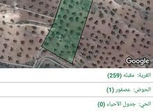 6 دونم مزرعة مميزة في جرش عصفور