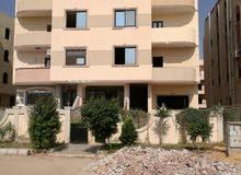 شقة 145 م حي الاوركيد المنطقة الاولى عمارات