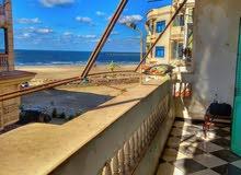 شقة ع البحر تاني مطل لهواة الهدوء و راحة البال