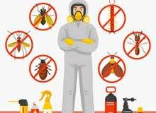 خدمات سريعه للقضاء علي الحشرات