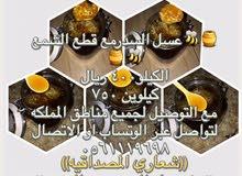 عسل سدر طبيعي ابو راشد لجميع انواع العسل
