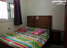 special apartment in Hurghada for rent